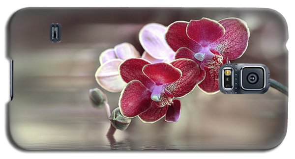 Orchid Reflection Galaxy S5 Case
