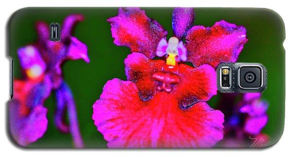 Orchid Study Three Galaxy S5 Case