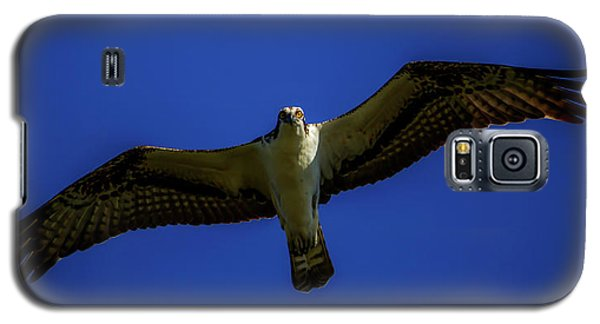 Osprey Glide In Blue Galaxy S5 Case