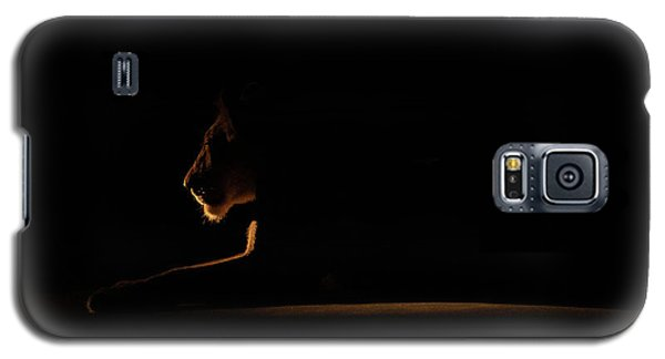 Outline African Lion Galaxy S5 Case