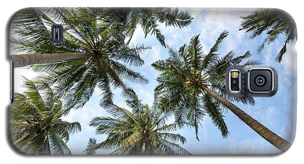 Palms  Beach Galaxy S5 Case