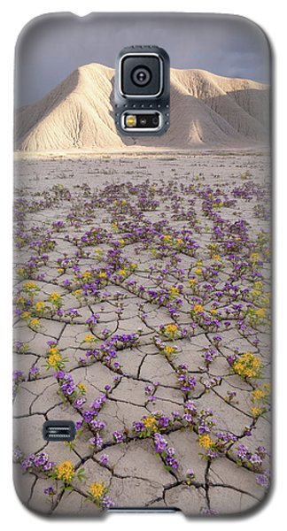 Parched Earth Galaxy S5 Case