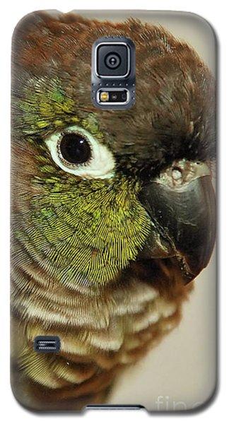 Parker Galaxy S5 Case