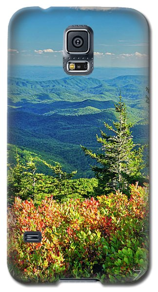 Parkway Tree Galaxy S5 Case