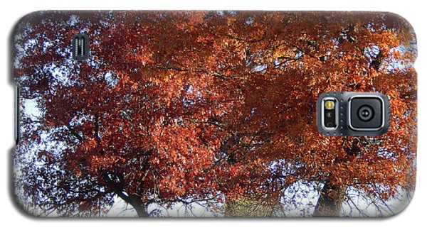 Passing Autumn Galaxy S5 Case