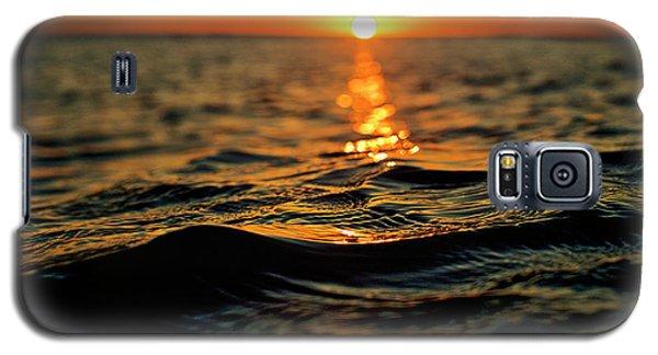 Pathway Galaxy S5 Case