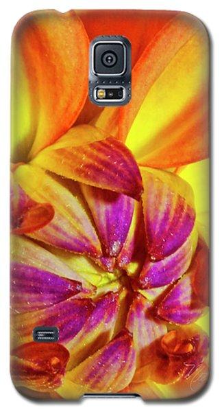 Peach Purple Flower Galaxy S5 Case