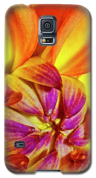 Peach Purple Flower Galaxy S5 Case