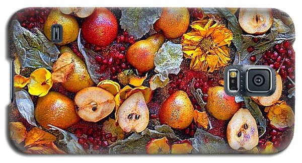 Pear Livable Tapestry Galaxy S5 Case