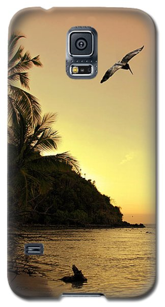 Pelican Sundown Galaxy S5 Case
