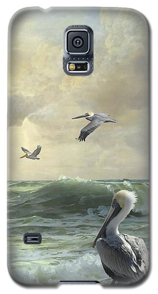 Pelicans In The Surf Galaxy S5 Case