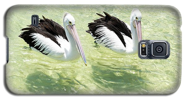 Pelicans Galaxy S5 Case