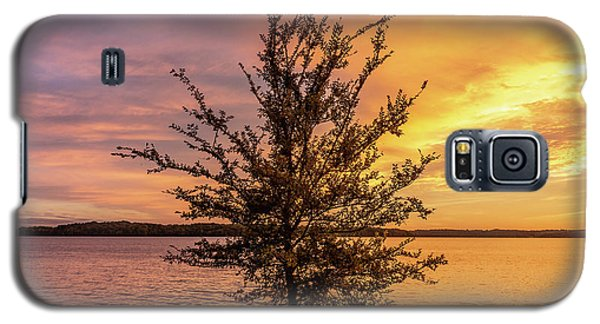 Percy Priest Lake Sunset Young Tree Galaxy S5 Case