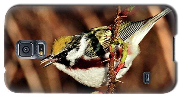 Perky Little Warbler Galaxy S5 Case