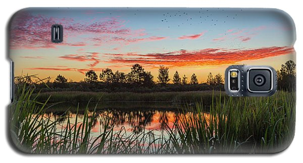 Phinizy Swamp Sunrise - Augusta Ga Galaxy S5 Case