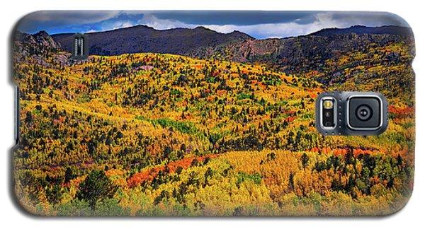 Pikes Peak Autumn Galaxy S5 Case