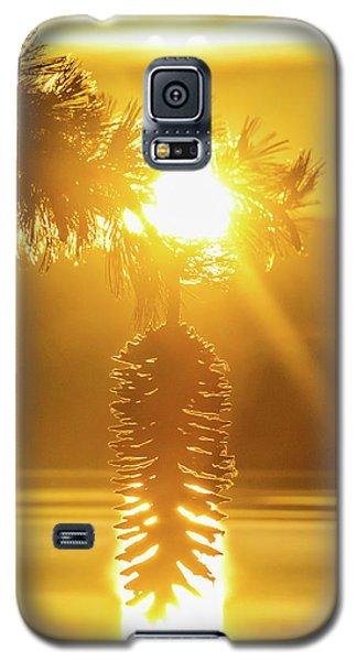 Pine Cone Fire Galaxy S5 Case