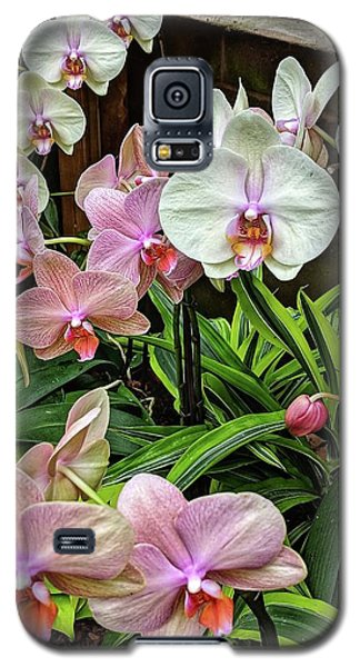 Pink And  White Orchids Galaxy S5 Case