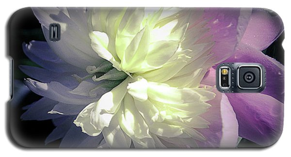Pink And White Peony Petals And Drops  Galaxy S5 Case