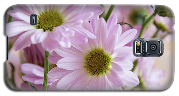 Pink Daisies-1 Galaxy S5 Case
