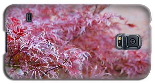 Pink Fairy Tale Galaxy S5 Case