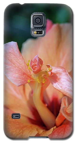 Pink Hibiscus Flower Galaxy S5 Case