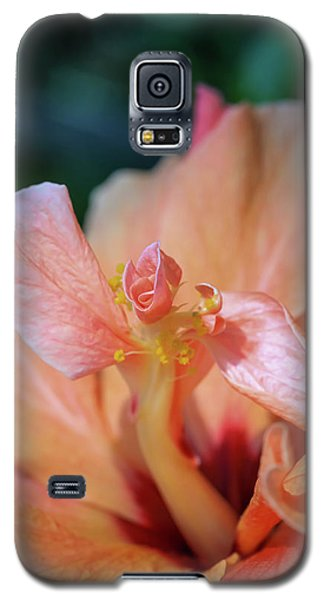 Pink Hibiscus Flower Galaxy S5 Case