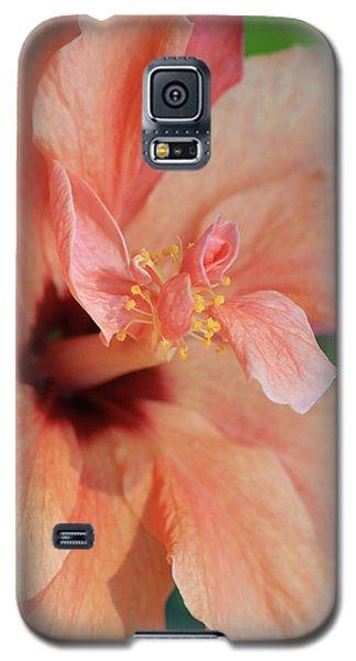 Pink Hibiscus Galaxy S5 Case