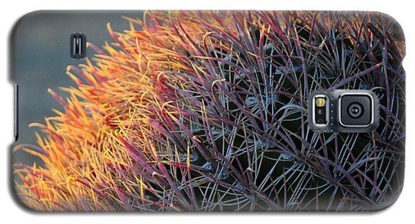Pink Prickly Cactus Galaxy S5 Case