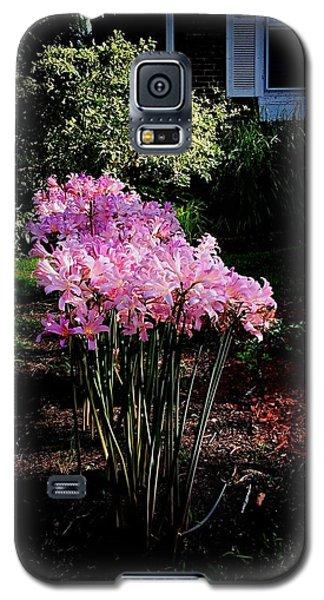 Pink Sunlit Flowers In The Neighborhood Galaxy S5 Case
