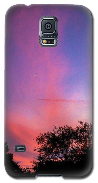 Pink Whisps Galaxy S5 Case