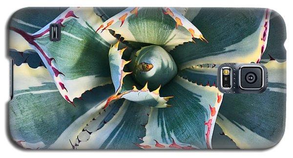 Pinwheel Succulent Galaxy S5 Case