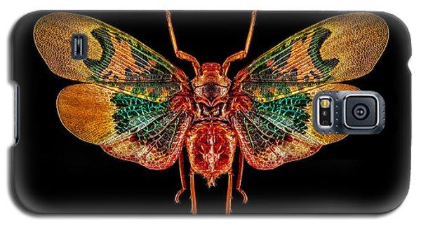 Planthopper Lanternfly Galaxy S5 Case