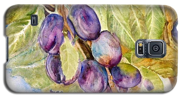 Plums On The Vine Galaxy S5 Case