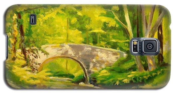 Pocantico River Sun Set Galaxy S5 Case
