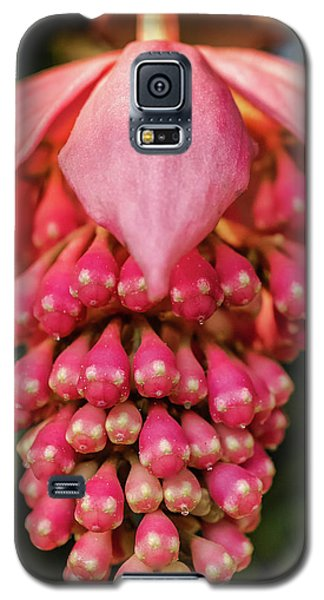 Pomegranate Flower Galaxy S5 Case