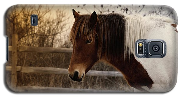Pony Warm Up Galaxy S5 Case