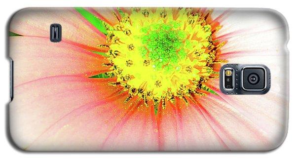 Pop Art Osteospermum 1 Galaxy S5 Case