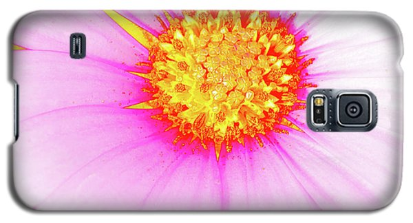 Pop Art Osteospermum 3 Galaxy S5 Case