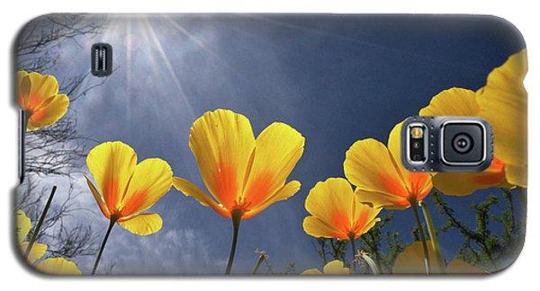 Poppies Enjoy The Sun Galaxy S5 Case