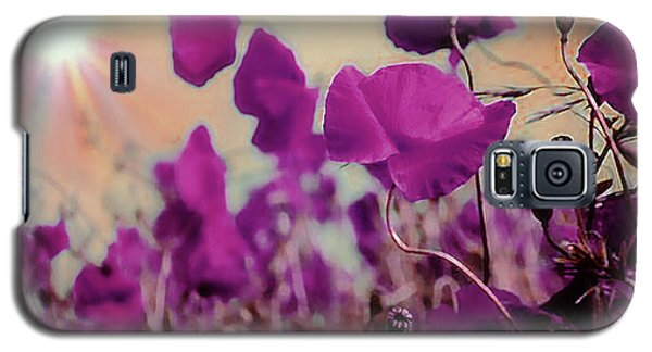 Poppies In Sunlight Galaxy S5 Case