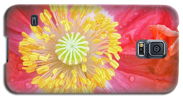 Poppy Closeup Galaxy S5 Case