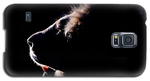 Portrait Of A Backlit Male African Lion Galaxy S5 Case