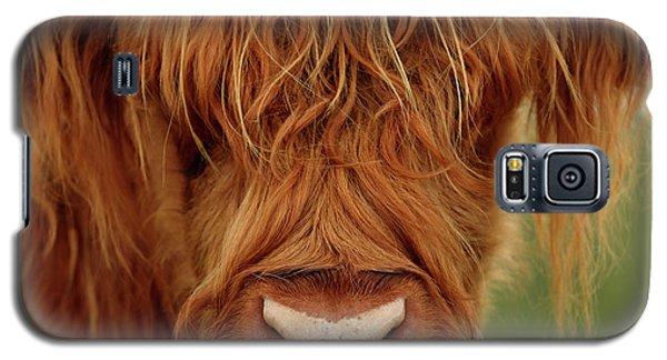 Portrait Of A Highland Cow Galaxy S5 Case
