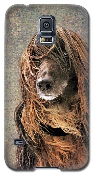 Portrait Of An Afghan Hound Galaxy S5 Case