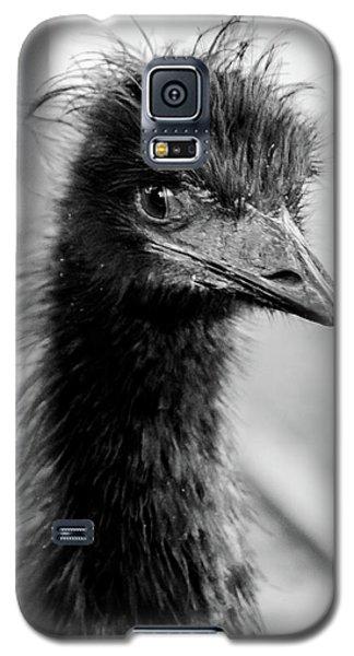 Portrait Of An Emu Galaxy S5 Case