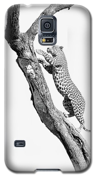 Power, Beauty And Grace Galaxy S5 Case