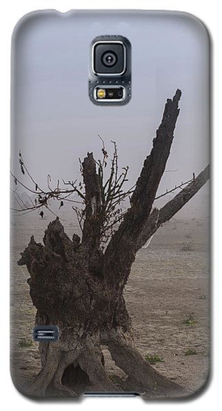 Prayer Of The Ent Galaxy S5 Case