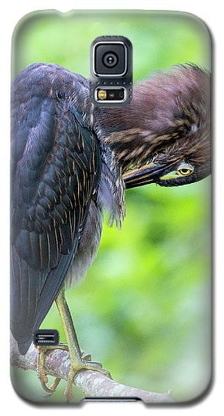 Preening Galaxy S5 Case