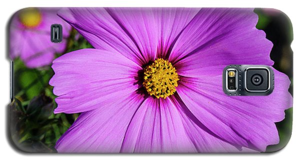 Lovely In Lavender Galaxy S5 Case